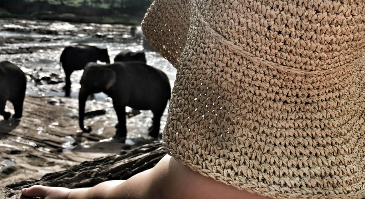Sri Lanka z dzieciakami – jest i film